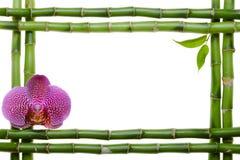 Bamboo frame Stock Photos