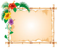 Bamboo Frame Stock Photography
