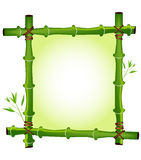 Bamboo frame. Green jungle bamboo frame design vector illustration