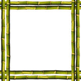 Bamboo frame. On a white background with copy space Stock Photos