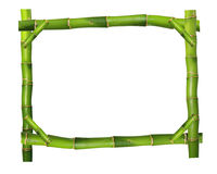 Bamboo frame. Bamboo tbranches isolated on white background Stock Images