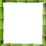 Bamboo frame. Whit copy space royalty free stock photos