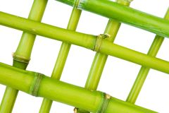 Bamboo frame. Isolated against a white background Stock Images