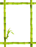 Bamboo frame. Isolated on white stock photos