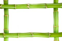 Free Bamboo Frame Stock Photos - 5003543