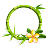 Bamboo frame with flower. Stock Photography