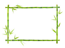 Bamboo Frame Isolated On White Background Stock Images