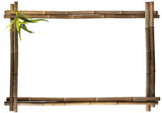 Bamboo frame landscape brown Royalty Free Stock Photography