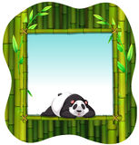 Bamboo frame and panda Royalty Free Stock Images