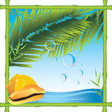 Bamboo frame with shell and palm branches Stock Photo