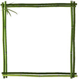 Bamboo frame square green Royalty Free Stock Photos