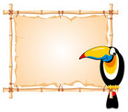 Bamboo frame and toucan Stock Photography