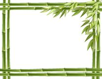 Bamboo frame. Vector background Royalty Free Stock Photos