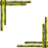 Bamboo frame. On a white background with copy space Royalty Free Stock Photography