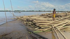 Bamboo, girl, mekong , cambodia, southeast asia stock footage
