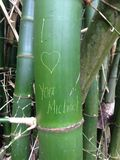 Bamboo graffiti love. I love michael bamboo message Royalty Free Stock Images