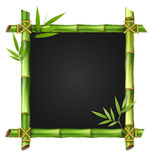 Bamboo grass frame with leafs  on white Royalty Free Stock Photography