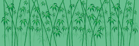 Bamboo on green Stock Photos