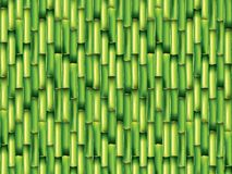 Bamboo green background  illustration Royalty Free Stock Photography