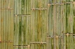 Bamboo green background Stock Photo