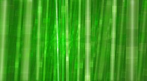 Bamboo green dreamy colorful background Stock Image