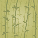 Bamboo. Green forest vector background Stock Image