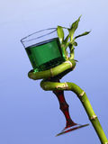 Bamboo green stalk and goblet Royalty Free Stock Images