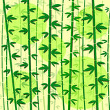 Bamboo green vector illustration Royalty Free Stock Images