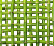 Bamboo grid Stock Photography