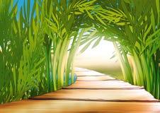 Bamboo grove. Highly detailed cartoon background 03 - illustration Royalty Free Stock Photos