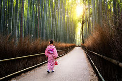 The bamboo groves Royalty Free Stock Image