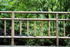 Bamboo guardrail Royalty Free Stock Images