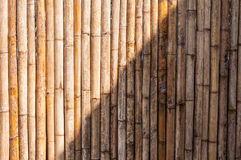 Bamboo half fence, nature texture for background Royalty Free Stock Photography