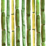 Bamboo hand drawing background  for best design vector illustration