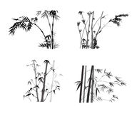 Bamboo Collection. Bamboo hand drawing collection grey scale Royalty Free Stock Image