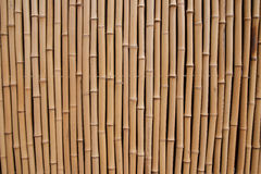 Bamboo. High resolution natural wood texture Stock Photos