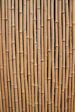 Bamboo. High resolution natural wood texture Stock Images