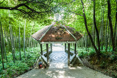 Bamboo hill Pavilion Royalty Free Stock Images