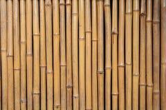 Bamboo house wall Stock Image