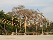 Bamboo Hut. A third world bamboo hut in the making. Only the starting structure is ready and then dry palms will be added Royalty Free Stock Images