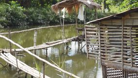 Nipa Bamboo foot Bridge and Hut on Fish Pond. Bamboo hut and bamboo foot bridge inside man-made fish pond stock video