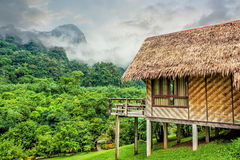 Bamboo hut and forest hill Stock Image