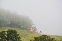 Bamboo hut on hill cover by mist in morning Royalty Free Stock Images