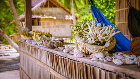 Bamboo Hut wih Sea Mussels and Corrals on Parapet of an Homestay on Gam Island, West Papuan, Raja Ampat, Indonesia Stock Images