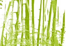 Bamboo Illustration Stock Image