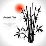 Bamboo,  illustration Royalty Free Stock Photography