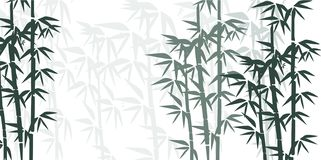 Bamboo illustration. Hand painted colorful bamboo composition. stock illustration