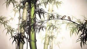 Bamboo ink painting hand drawn Stock Photo