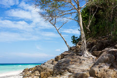 Bamboo island. In Andaman sea. South Thailand. Tropical island Royalty Free Stock Photo