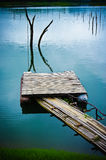 Bamboo jetty. Jetty made of bamboo jutting into water with dead trees Royalty Free Stock Photography